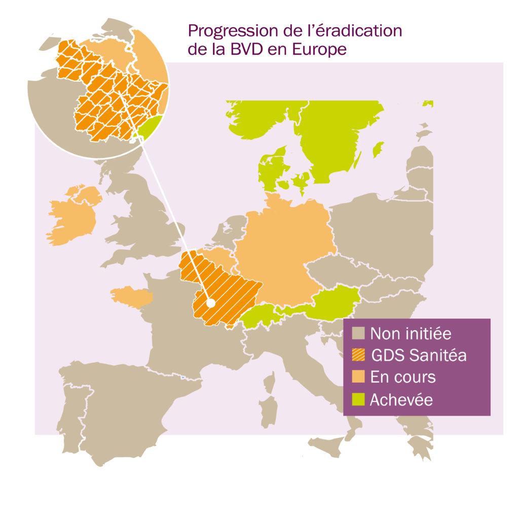 Progression de l'éradication de la BVD en Europe